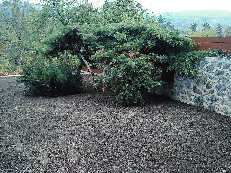Finální podoba zahrady již po výsevu z jiného úhlu pohledu